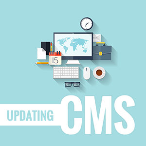 Courtland Consulting CMS