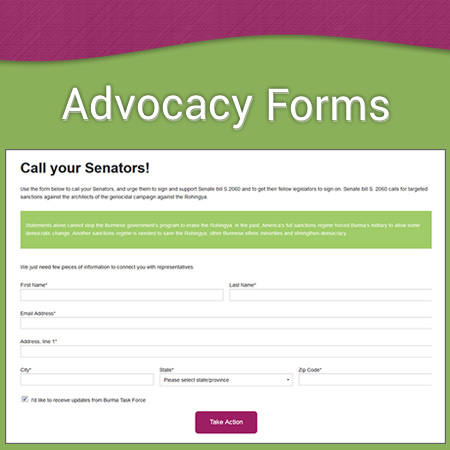 Courtland Consulting -Advocacy Forms