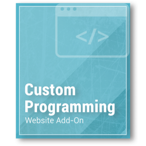 Website Add-On - Custom Programming