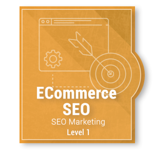 SEO Marketing - ECommerce Level 1 Package